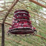Lampshade hanging from wooden structure